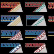 bernette Funlock 48 Stitch Patterns